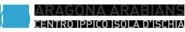 Aragona Arabians Logo